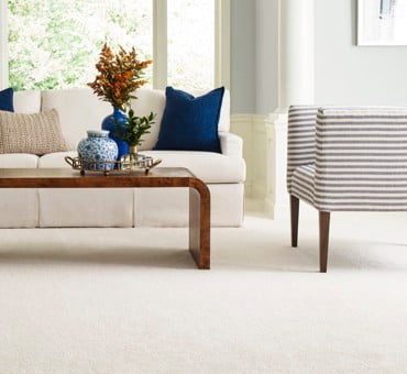 Spill-Proof Carpet